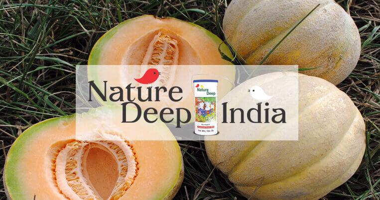 sumitomo naturedeep for muskmelon crop mobile banner