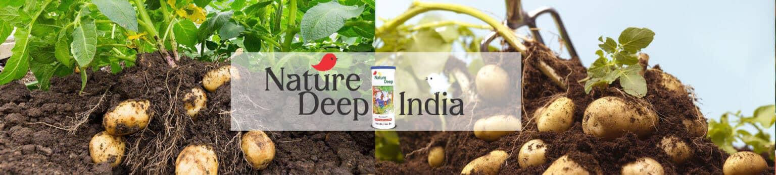 sumitomo naturedeep for potato crop desktop banner