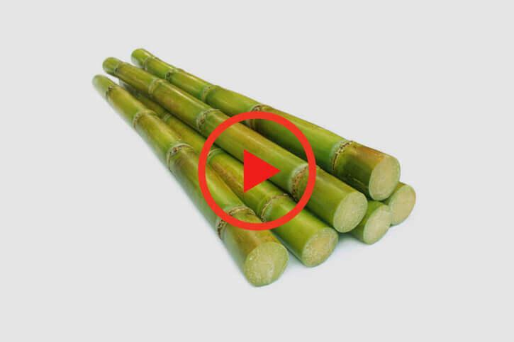 sumitomo naturedeep for sugercane crop