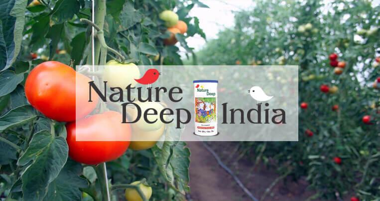 sumitomo naturedeep for tomato crop mobile banner
