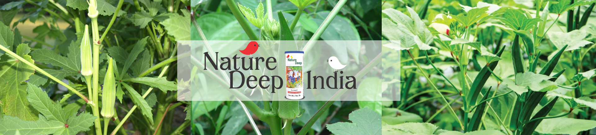 naturedeep in Ladyfinger crop desktop