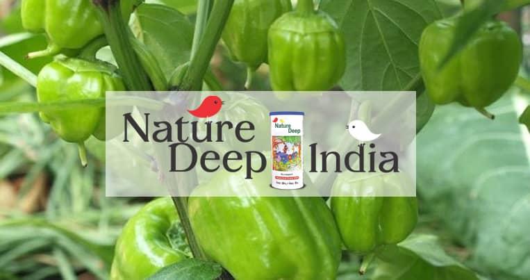 sumitomo naturedeep for capsicum crop mobile banner