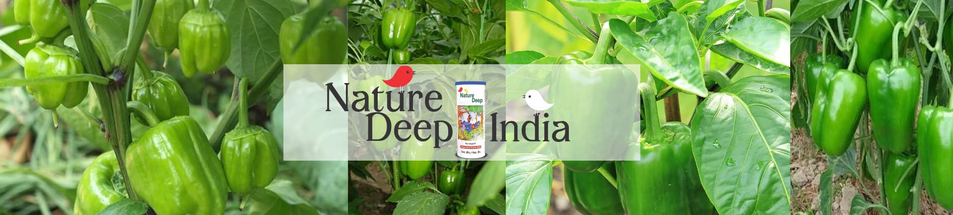 sumitomo naturedeep for capsicum crop desktop banner