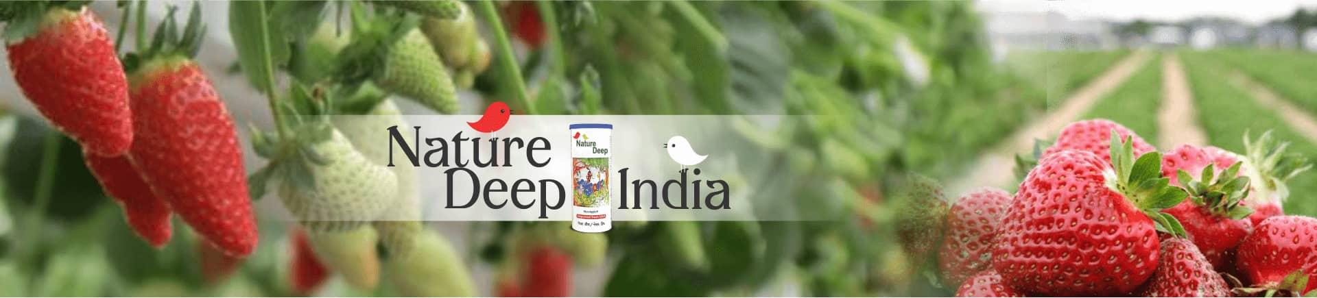 sumitomo naturedeep for strawberry crop desktop banner