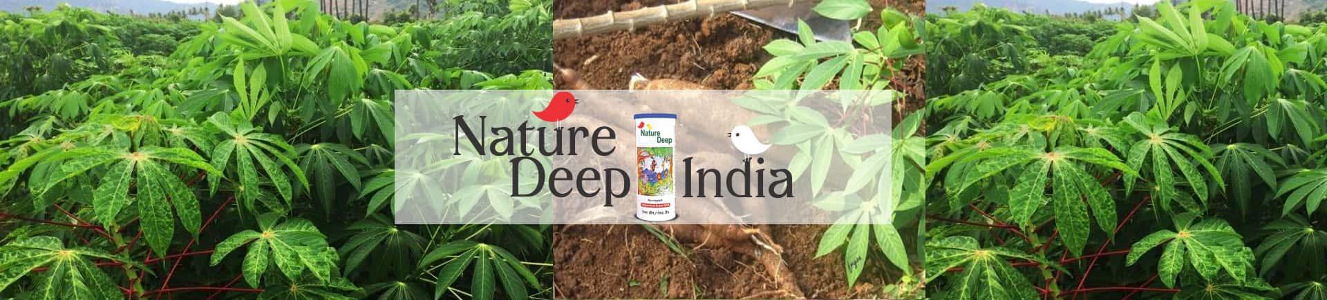 sumitomo naturedeep for cassava crop desktop banner