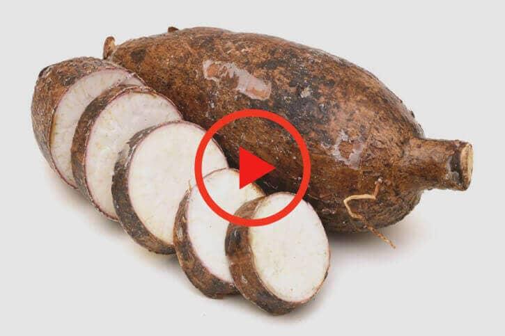 sumitomo naturedeep for cassava crop